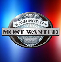 Washington's Most Wanted with David Rose on Fox Q13